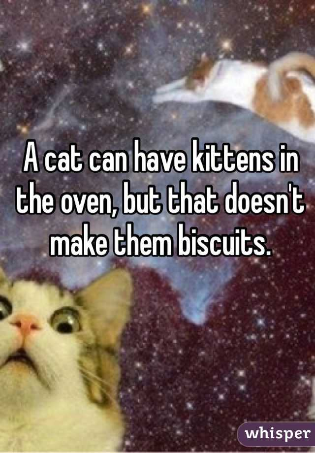 A cat can have kittens in the oven, but that doesn't make them biscuits.
