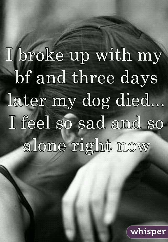 I broke up with my bf and three days later my dog died... I feel so sad and so alone right now