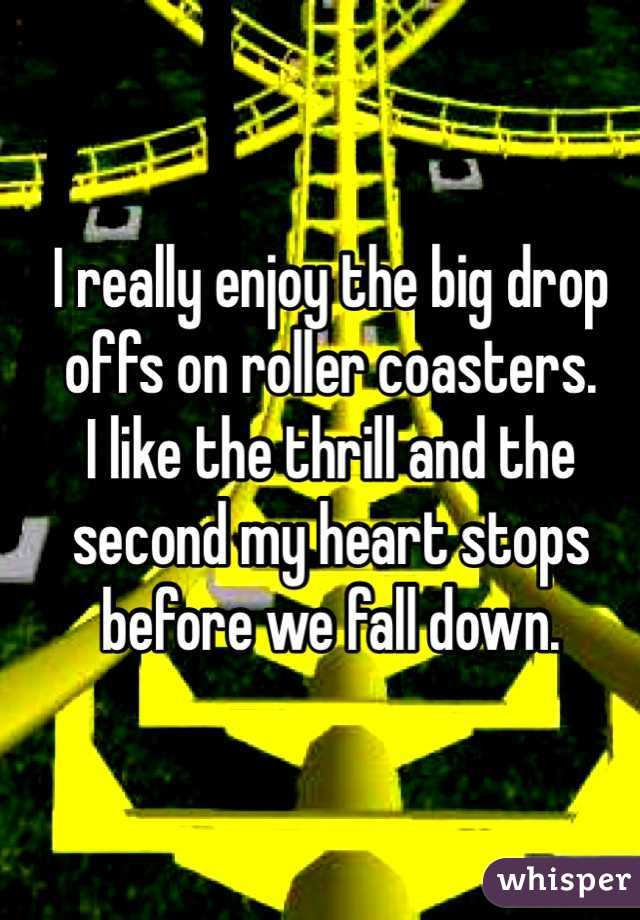I really enjoy the big drop offs on roller coasters.  I like the thrill and the second my heart stops before we fall down.