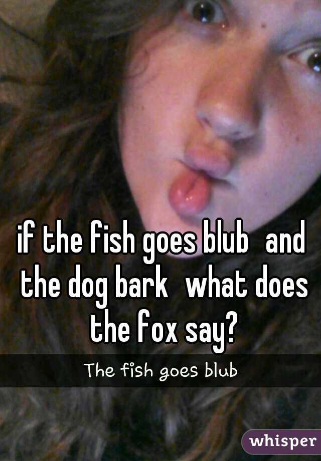 if the fish goes blub and the dog bark what does the fox say?