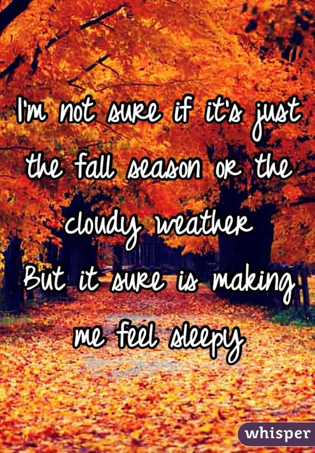 I'm not sure if it's just the fall season or the cloudy weather  But it sure is making me feel sleepy