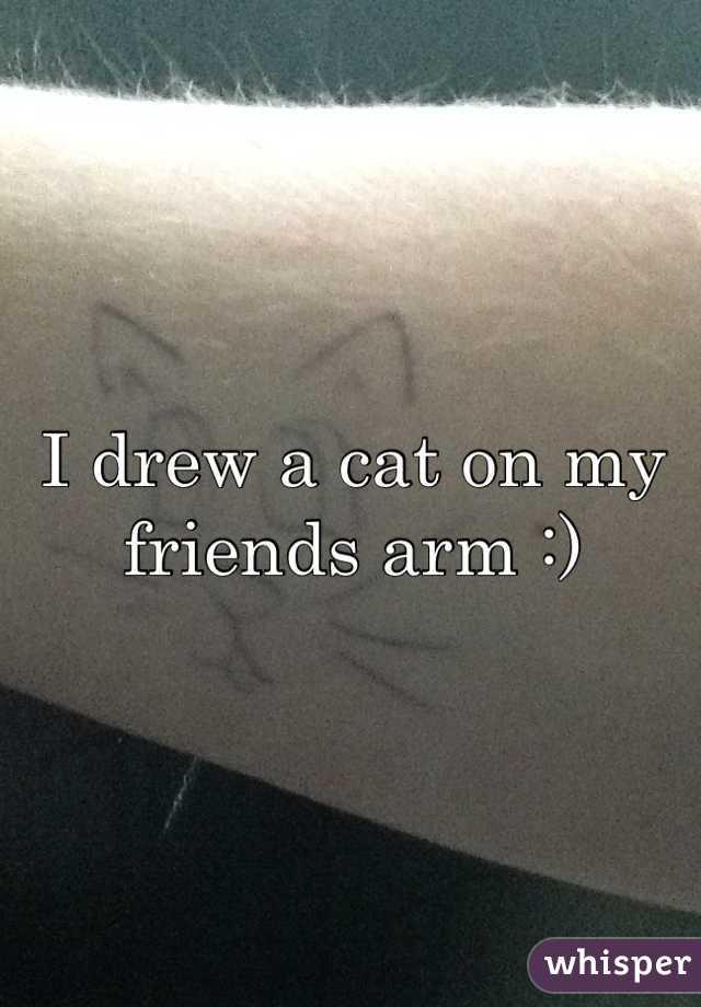 I drew a cat on my friends arm :)