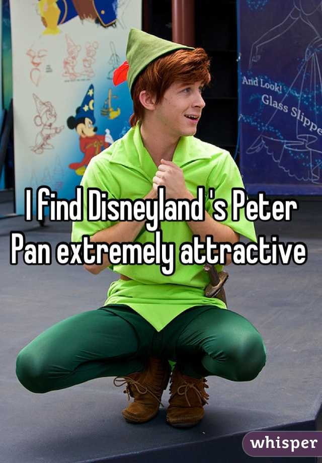 I find Disneyland 's Peter Pan extremely attractive