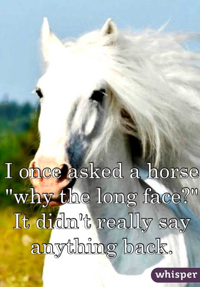 """I once asked a horse """"why the long face?"""" It didn't really say anything back."""