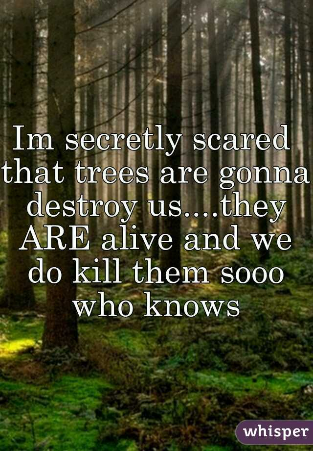 Im secretly scared that trees are gonna destroy us....they ARE alive and we do kill them sooo who knows