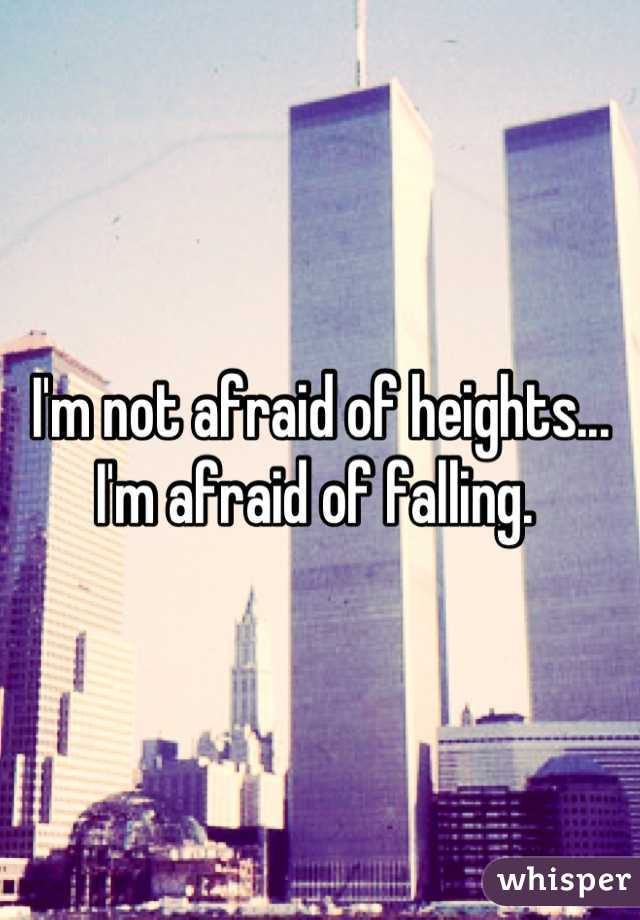 I'm not afraid of heights... I'm afraid of falling.