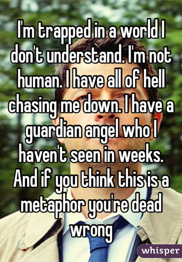 I'm trapped in a world I don't understand. I'm not human. I have all of hell chasing me down. I have a guardian angel who I haven't seen in weeks.  And if you think this is a metaphor you're dead wrong