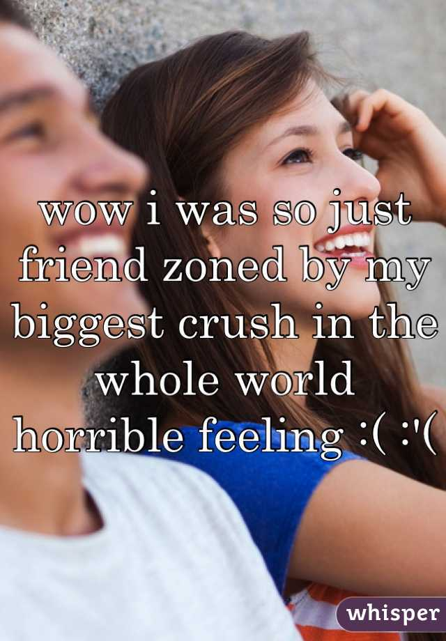 wow i was so just friend zoned by my biggest crush in the whole world  horrible feeling :( :'(
