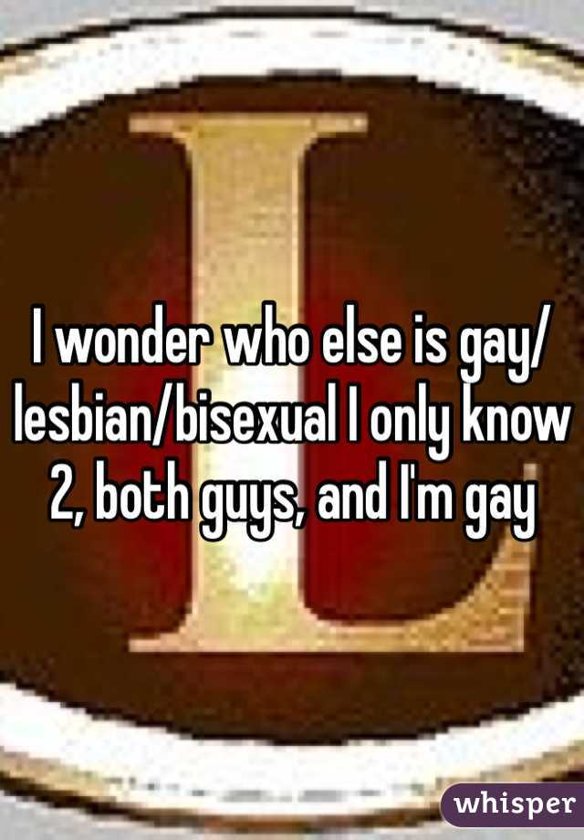 I wonder who else is gay/lesbian/bisexual I only know 2, both guys, and I'm gay
