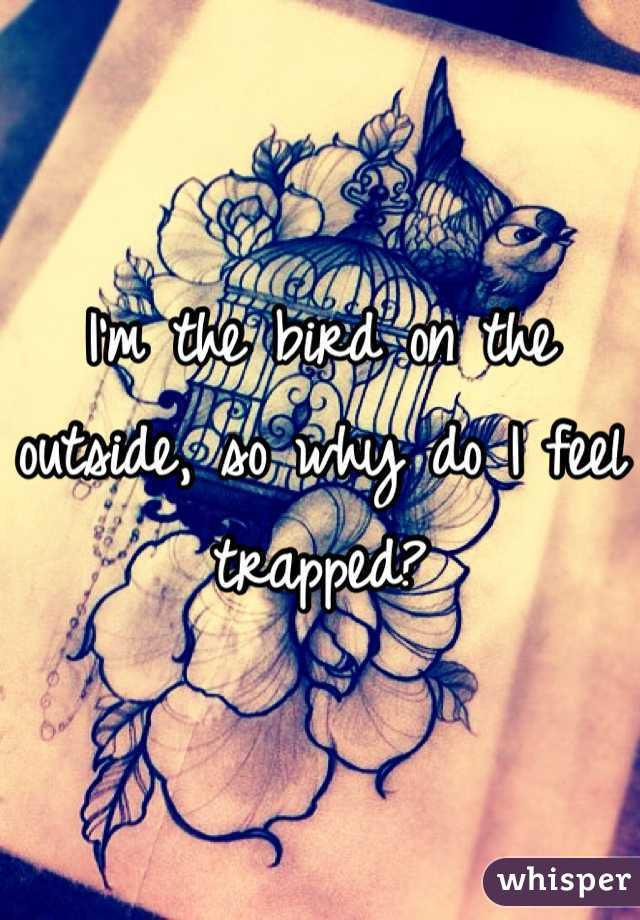 I'm the bird on the outside, so why do I feel trapped?