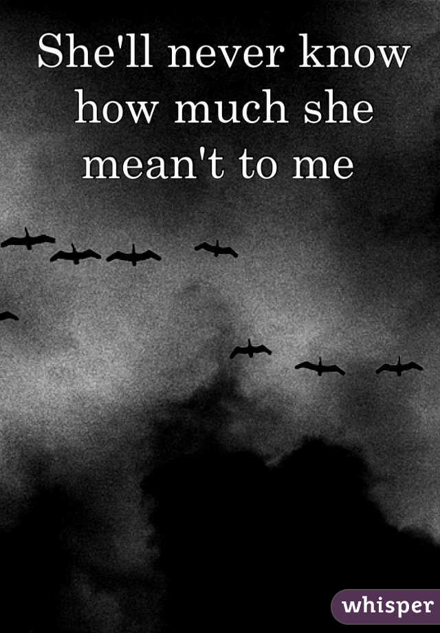 She'll never know how much she mean't to me