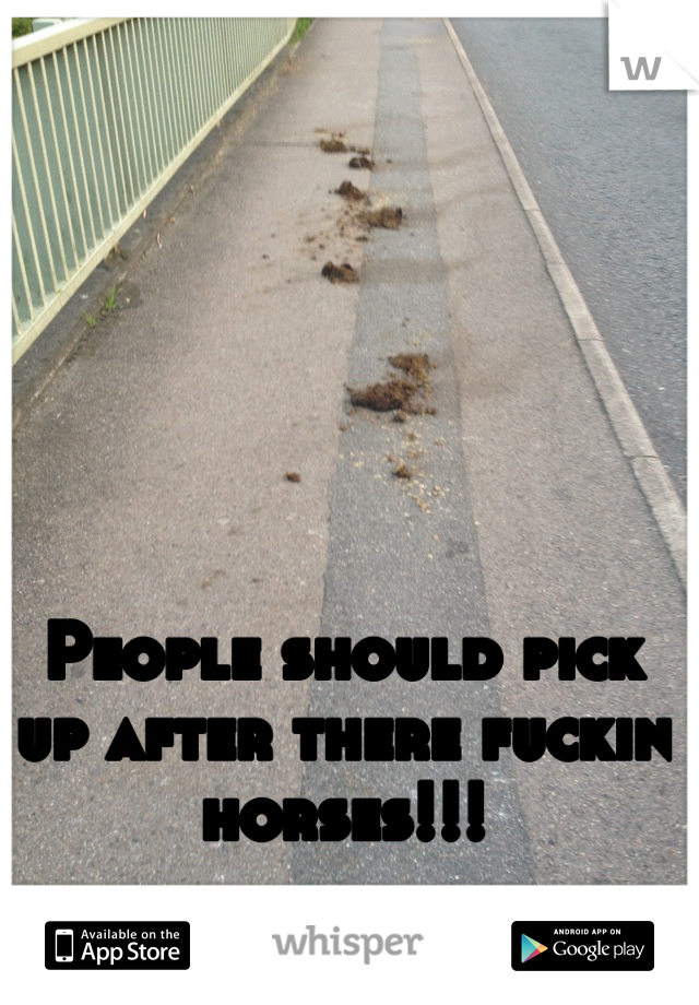 People should pick up after there fuckin horses!!!