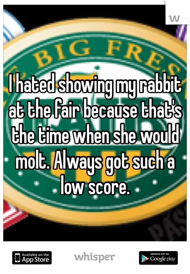 I hated showing my rabbit at the fair because that's the time when she would molt. Always got such a low score.