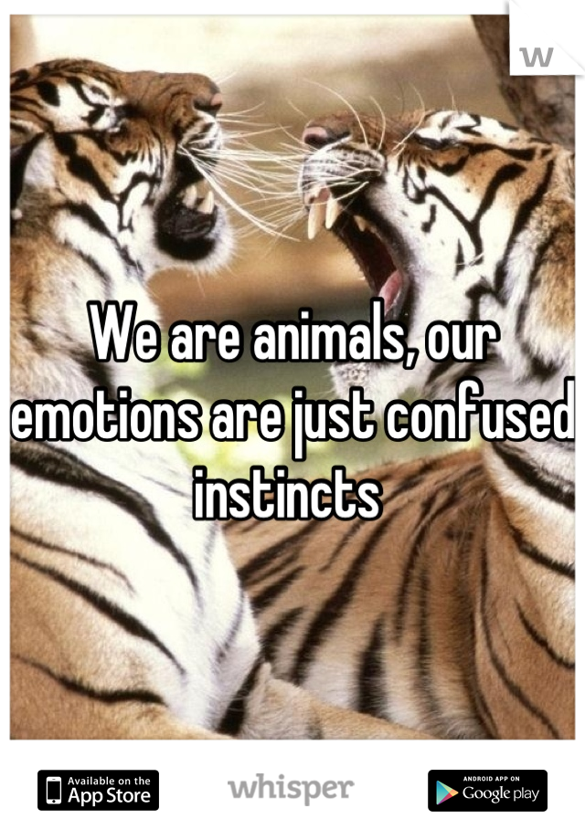 We are animals, our emotions are just confused instincts