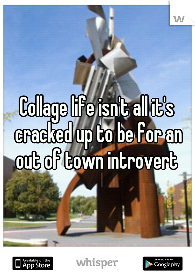 Collage life isn't all it's cracked up to be for an out of town introvert