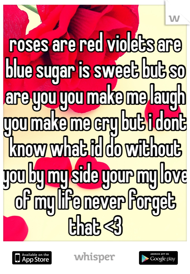 roses are red violets are blue sugar is sweet but so are you you make me laugh you make me cry but i dont know what id do without you by my side your my love of my life never forget that <3
