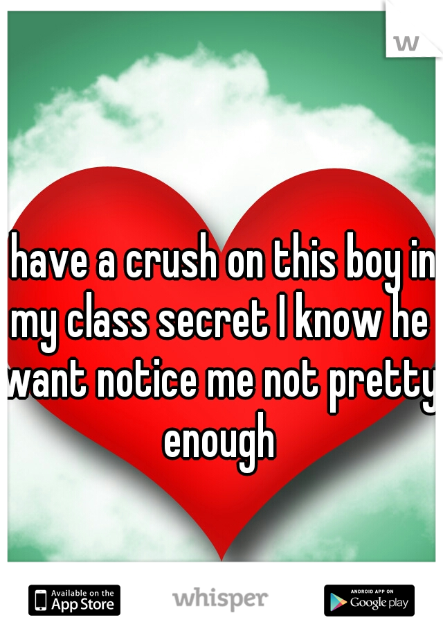I have a crush on this boy in my class secret I know he want notice me not pretty enough