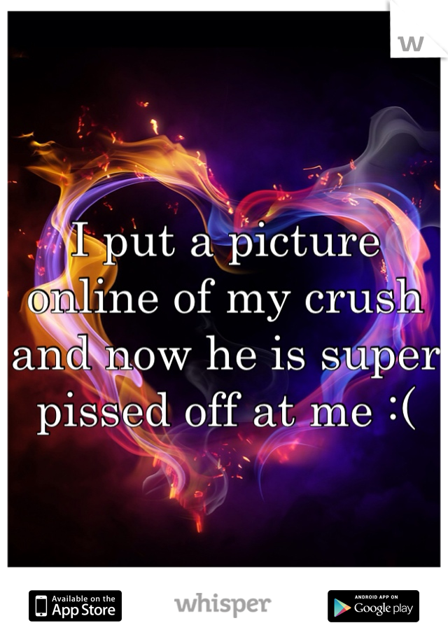 I put a picture online of my crush and now he is super pissed off at me :(