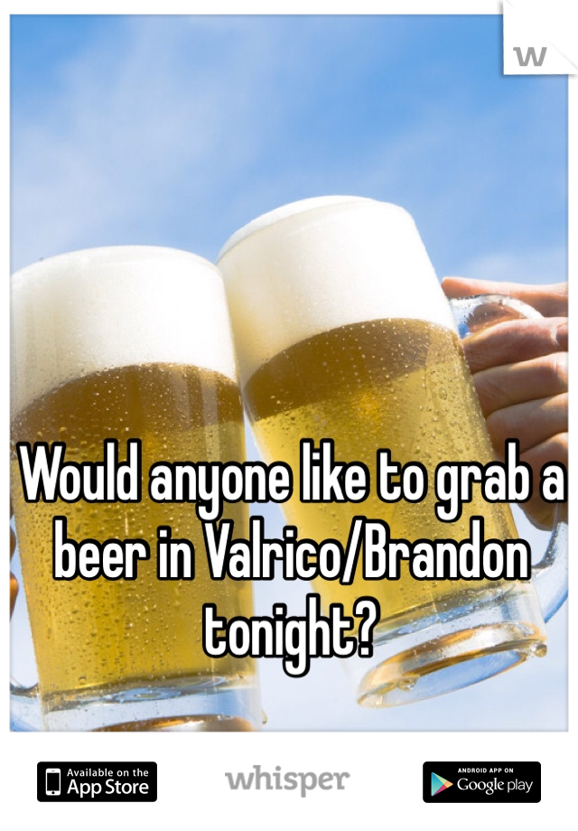 Would anyone like to grab a beer in Valrico/Brandon tonight?