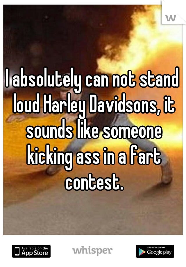 I absolutely can not stand loud Harley Davidsons, it sounds like someone kicking ass in a fart contest.