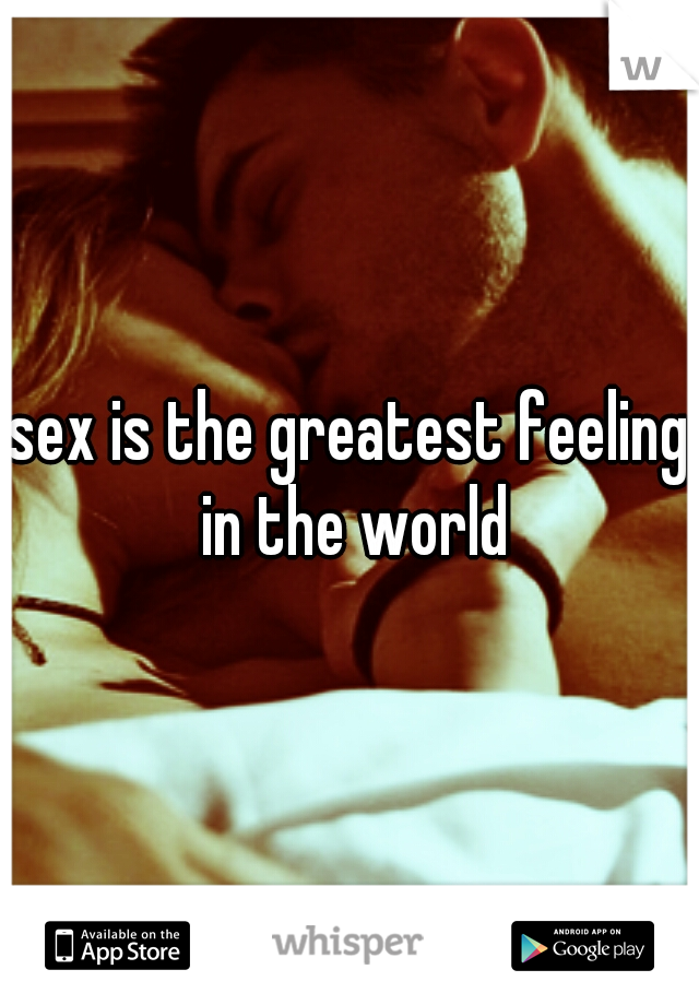 sex is the greatest feeling in the world