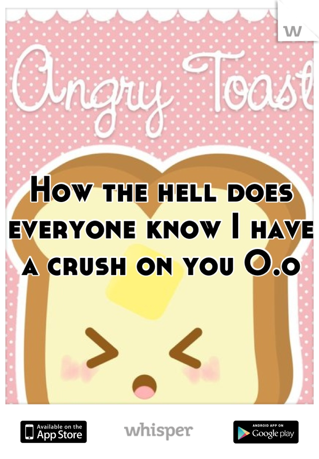 How the hell does everyone know I have a crush on you O.o