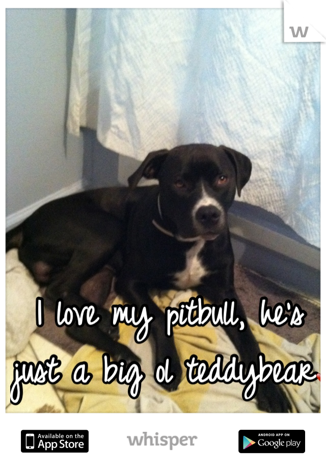 I love my pitbull, he's just a big ol teddybear❤