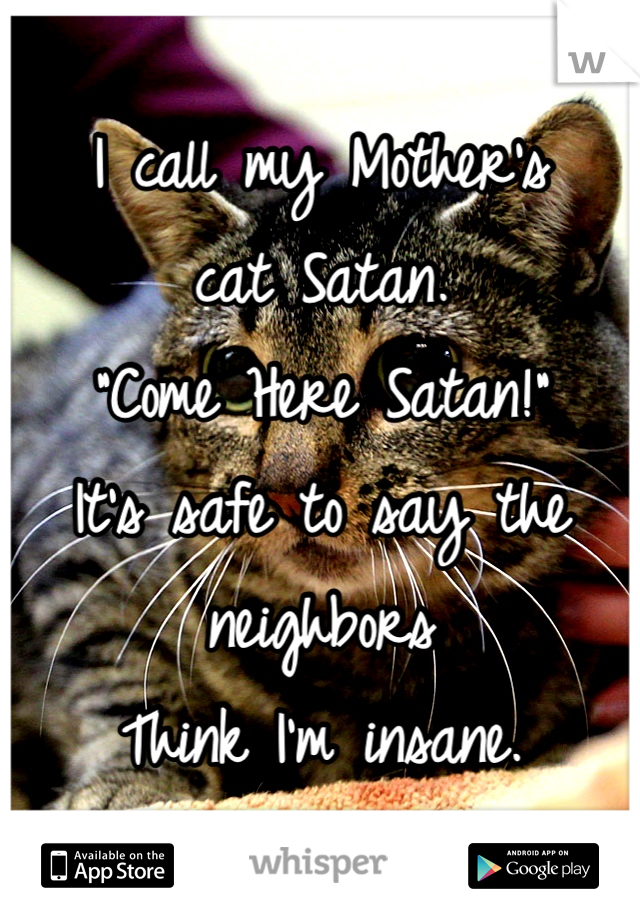 """I call my Mother's  cat Satan. """"Come Here Satan!""""  It's safe to say the neighbors  Think I'm insane."""