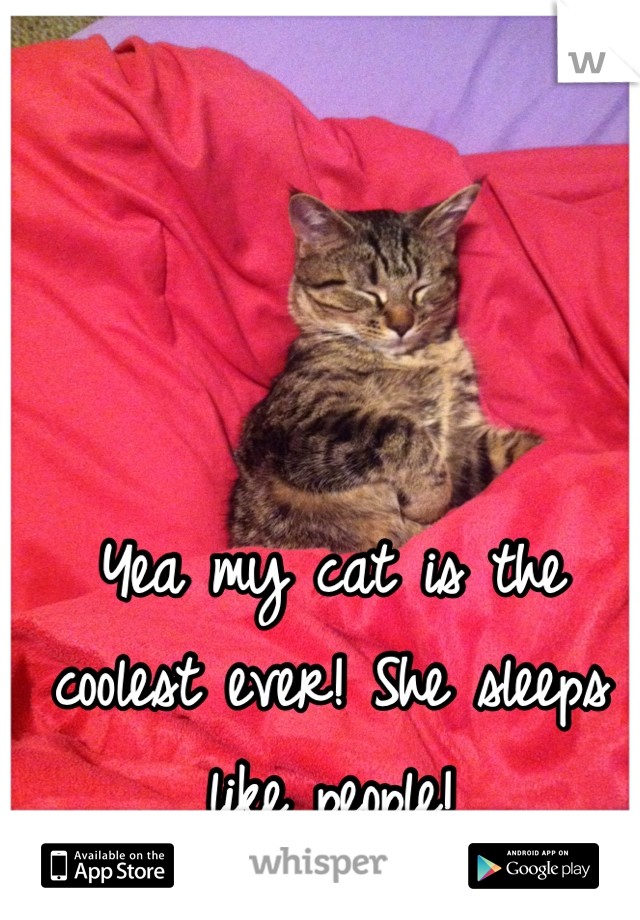 Yea my cat is the coolest ever! She sleeps like people!