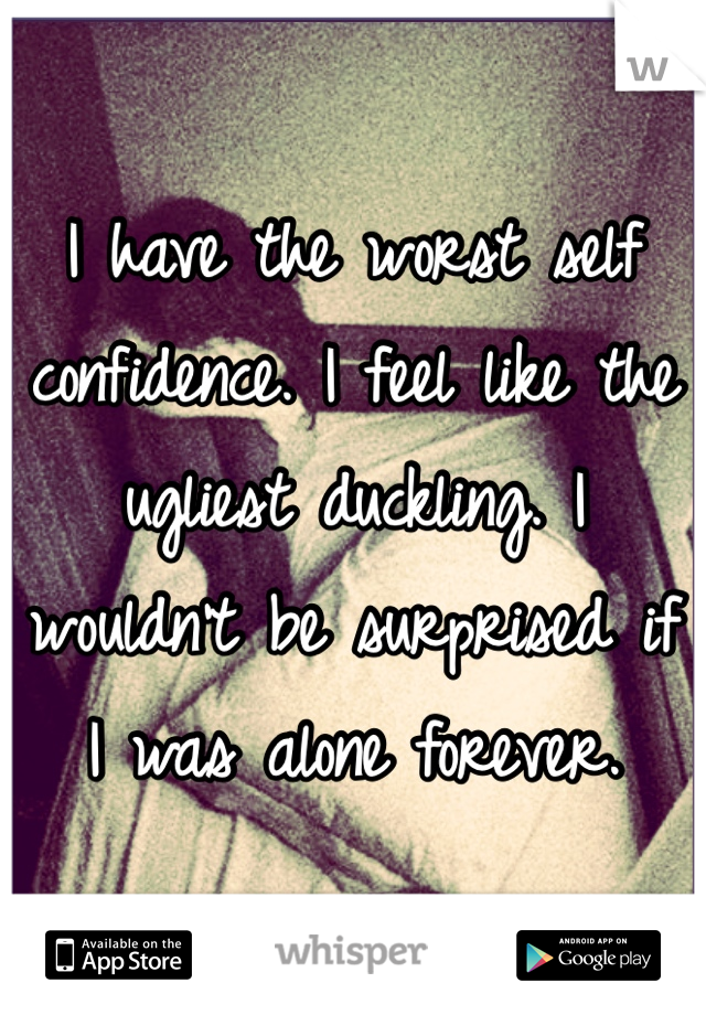I have the worst self confidence. I feel like the ugliest duckling. I wouldn't be surprised if I was alone forever.