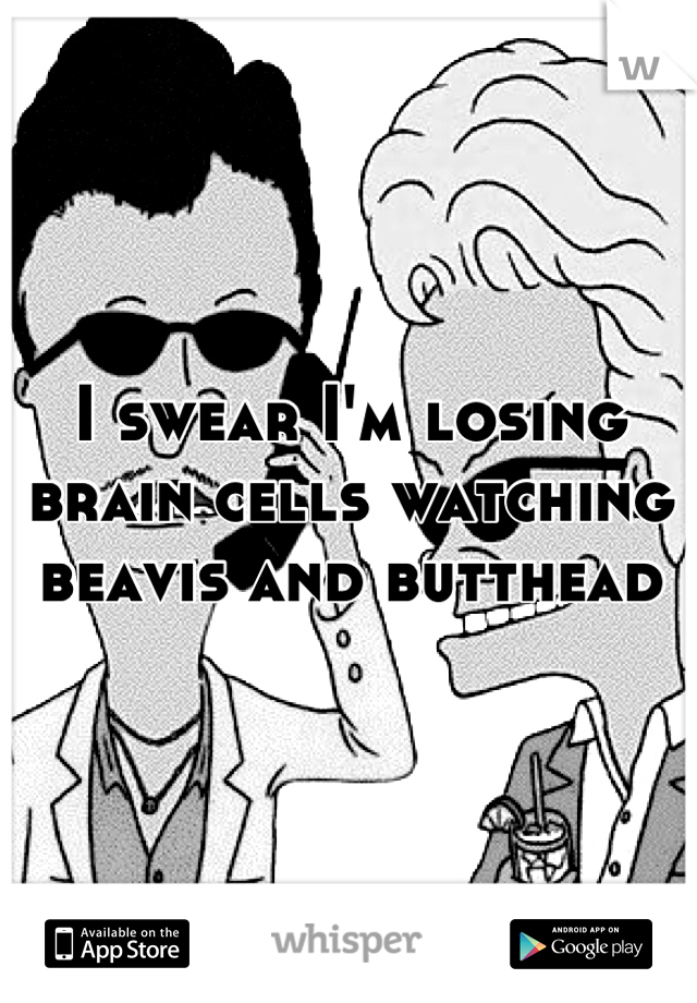 I swear I'm losing brain cells watching beavis and butthead