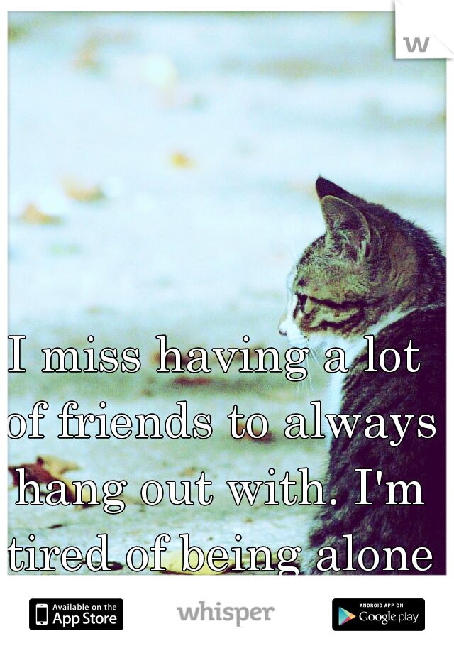 I miss having a lot of friends to always hang out with. I'm tired of being alone all the time.