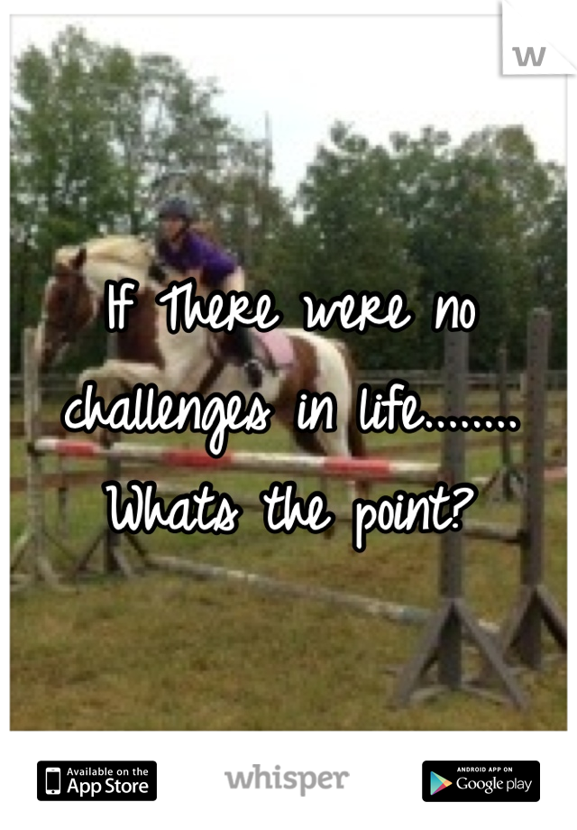 If There were no challenges in life........ Whats the point?
