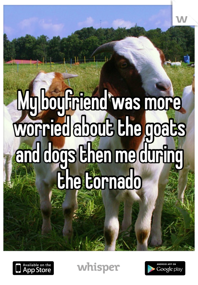 My boyfriend was more worried about the goats and dogs then me during the tornado
