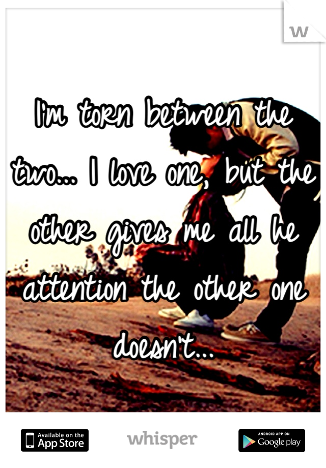 I'm torn between the two... I love one, but the other gives me all he attention the other one doesn't...