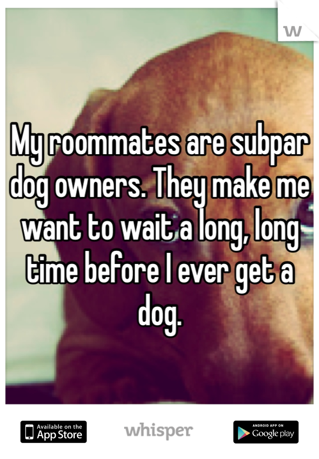 My roommates are subpar dog owners. They make me want to wait a long, long time before I ever get a dog.