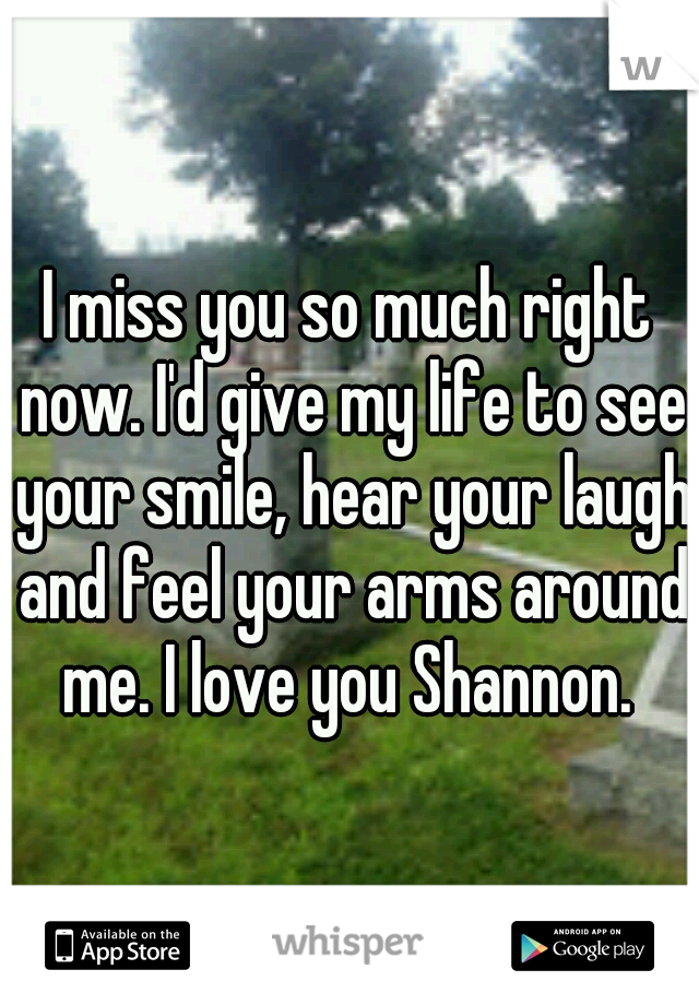 I miss you so much right now. I'd give my life to see your smile, hear your laugh and feel your arms around me. I love you Shannon.