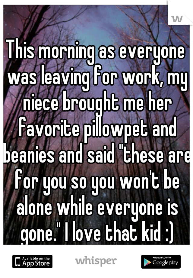 """This morning as everyone was leaving for work, my niece brought me her favorite pillowpet and beanies and said """"these are for you so you won't be alone while everyone is gone."""" I love that kid :)"""