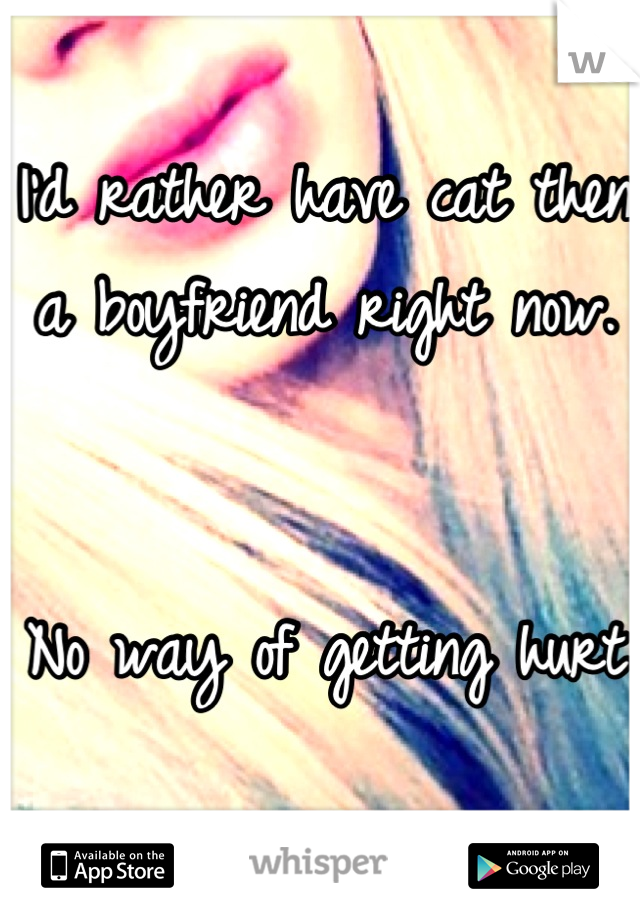 I'd rather have cat then a boyfriend right now.   No way of getting hurt
