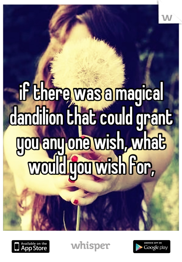 if there was a magical dandilion that could grant you any one wish, what would you wish for,