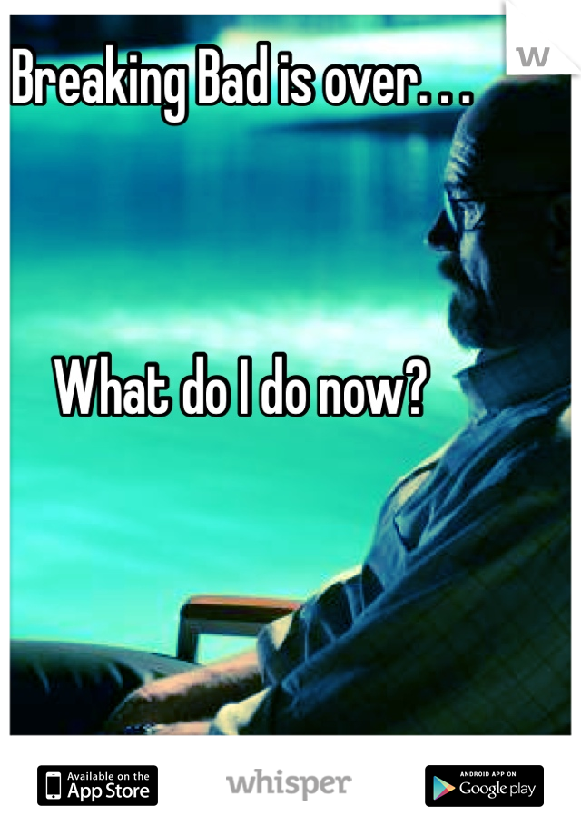 Breaking Bad is over. . .    What do I do now?