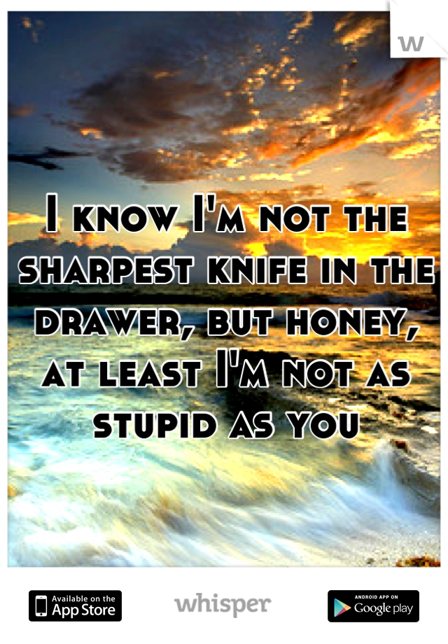 I know I'm not the sharpest knife in the drawer, but honey, at least I'm not as stupid as you