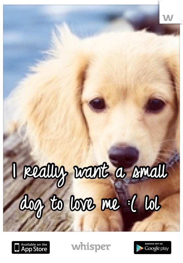 I really want a small dog to love me :( lol