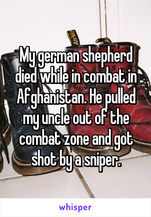 My german shepherd died while in combat in Afghanistan. He pulled my uncle out of the combat zone and got shot by a sniper.