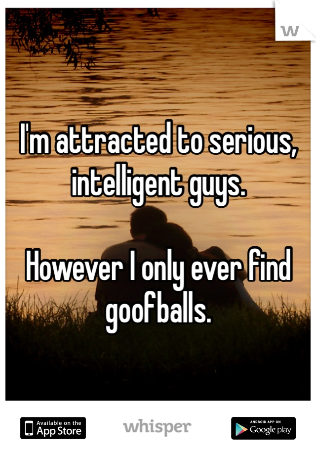 I'm attracted to serious, intelligent guys.   However I only ever find goofballs.