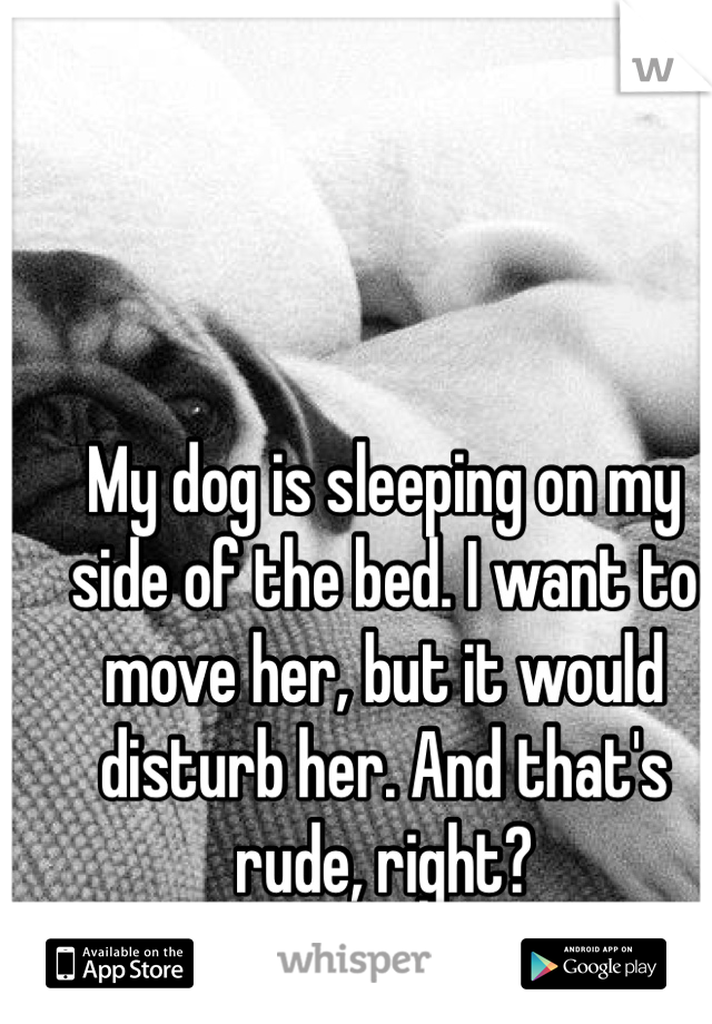 My dog is sleeping on my side of the bed. I want to move her, but it would disturb her. And that's rude, right?
