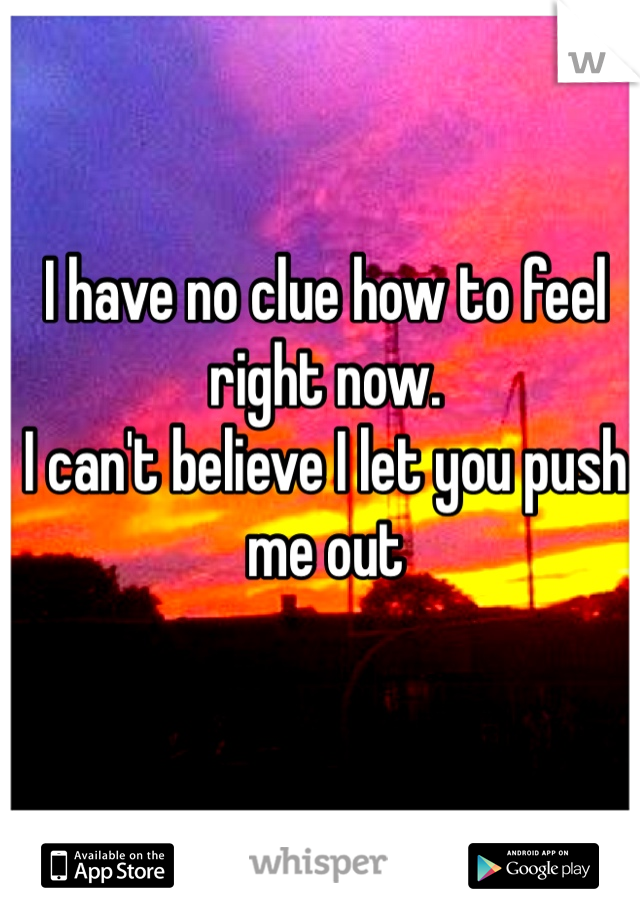 I have no clue how to feel right now.  I can't believe I let you push me out