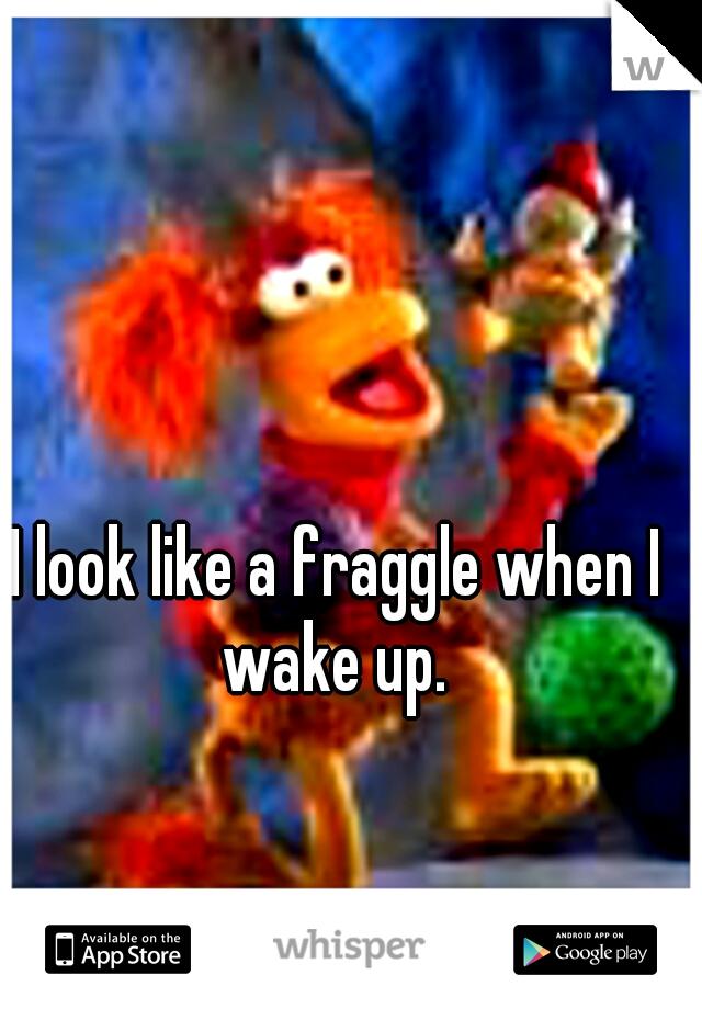 I look like a fraggle when I wake up.