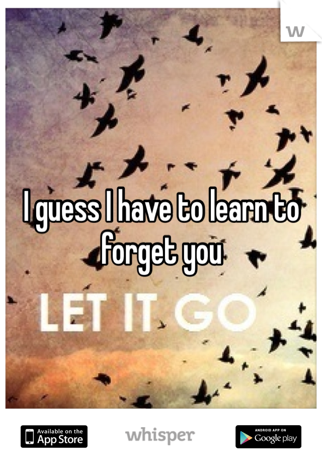 I guess I have to learn to forget you