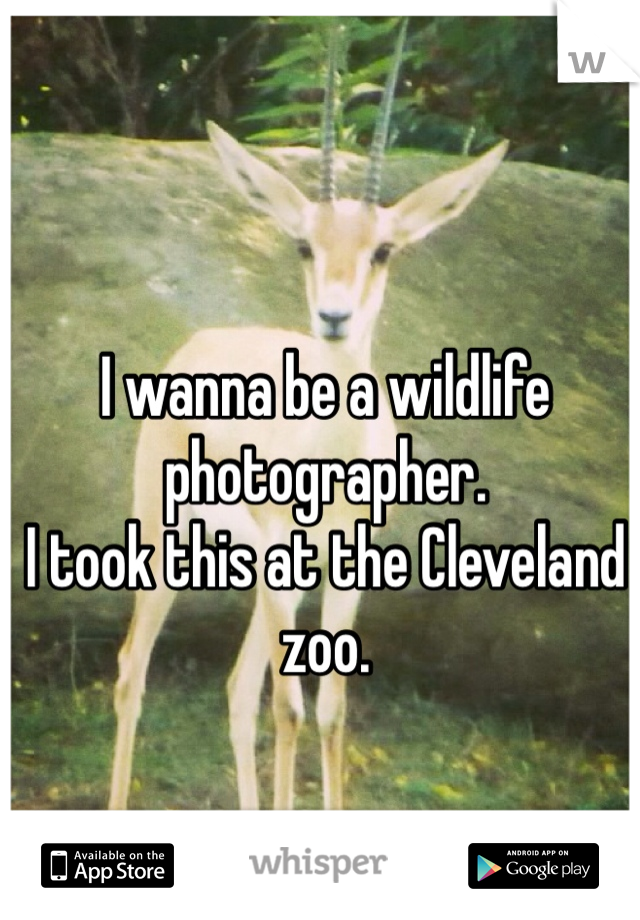 I wanna be a wildlife photographer.  I took this at the Cleveland zoo.